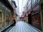 the rue